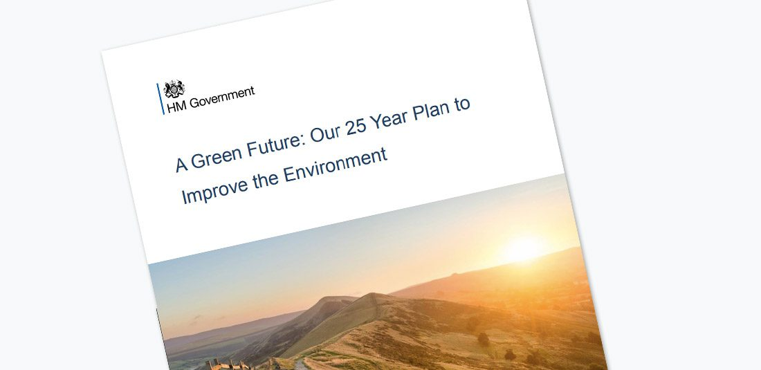 Green Future Document cover
